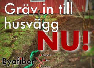 Gräv i trädgården nu